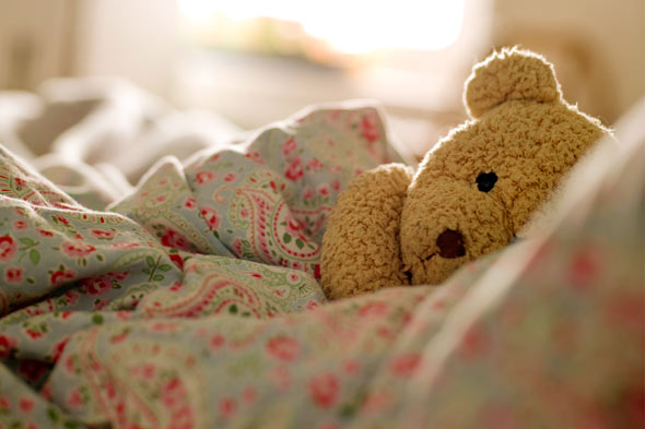 teddy-bear-child-room-graduation-590kb083010