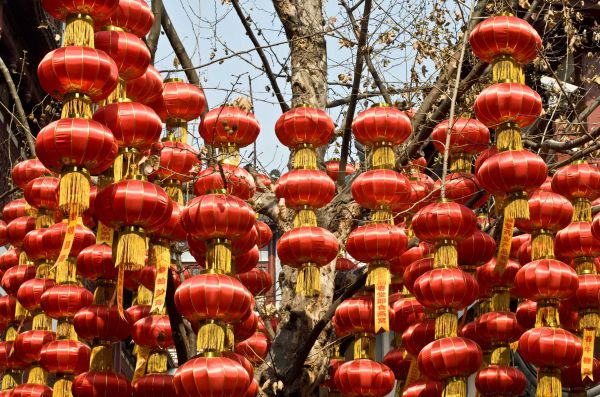 chinese-new-year-2011_003