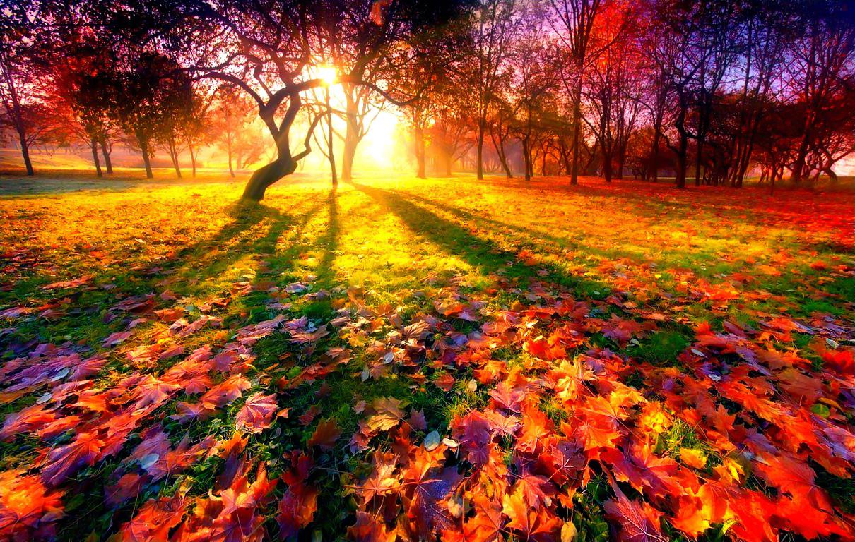 сентябрь картинки красивые
